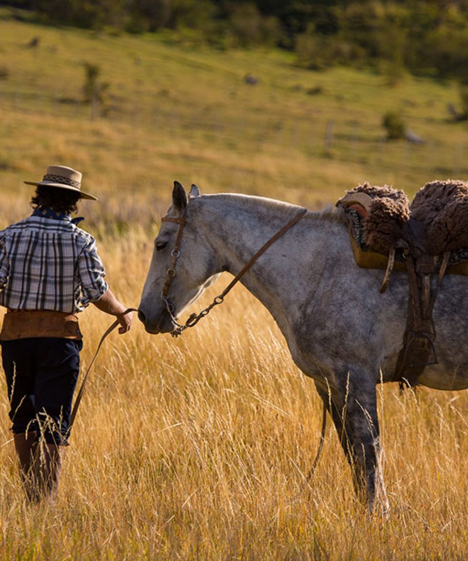 Ranch in Patagonia Calafate Nibepo