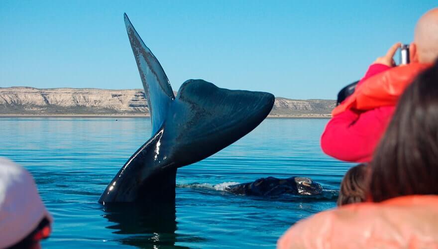 Patagonia Family Vacation